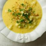 Macaroni and Cheese Soup