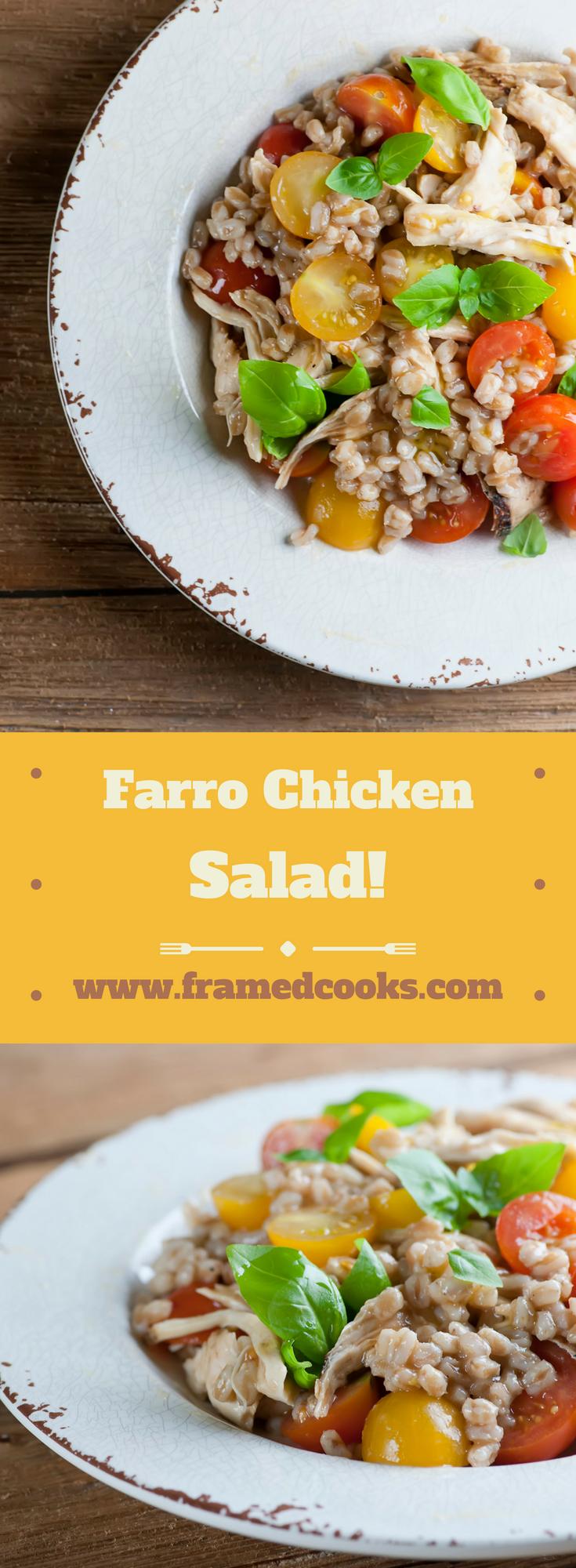 This easy recipe for farro chicken salad combines chicken with cheery vegetables and herbs and the nutty deliciousness of farro!  If you haven't tried farro yet, this recipe is for you!