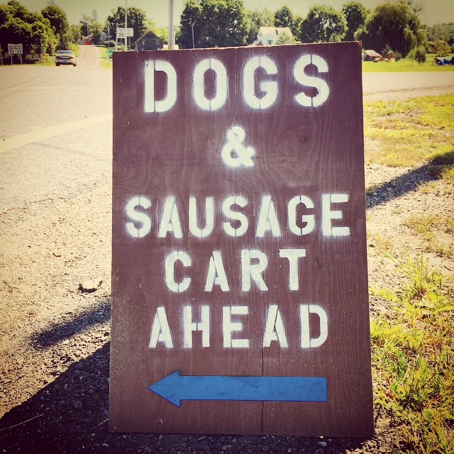 I'm just going to go ahead and hope for the best concerning this sign. #instadog