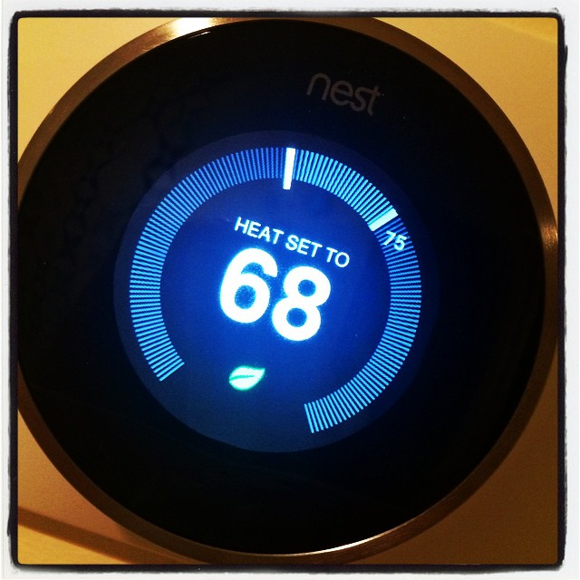 First day with the nest. Theoretically in a week it will anticipate our every move.