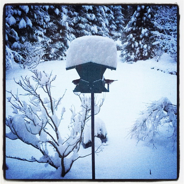 Excuse me weather people, but 2-5 inches? The top of my bird feeder begs to differ.  #winterwonderland #stillcomingdown
