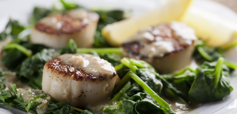 Scallops with Lemon Drizzle