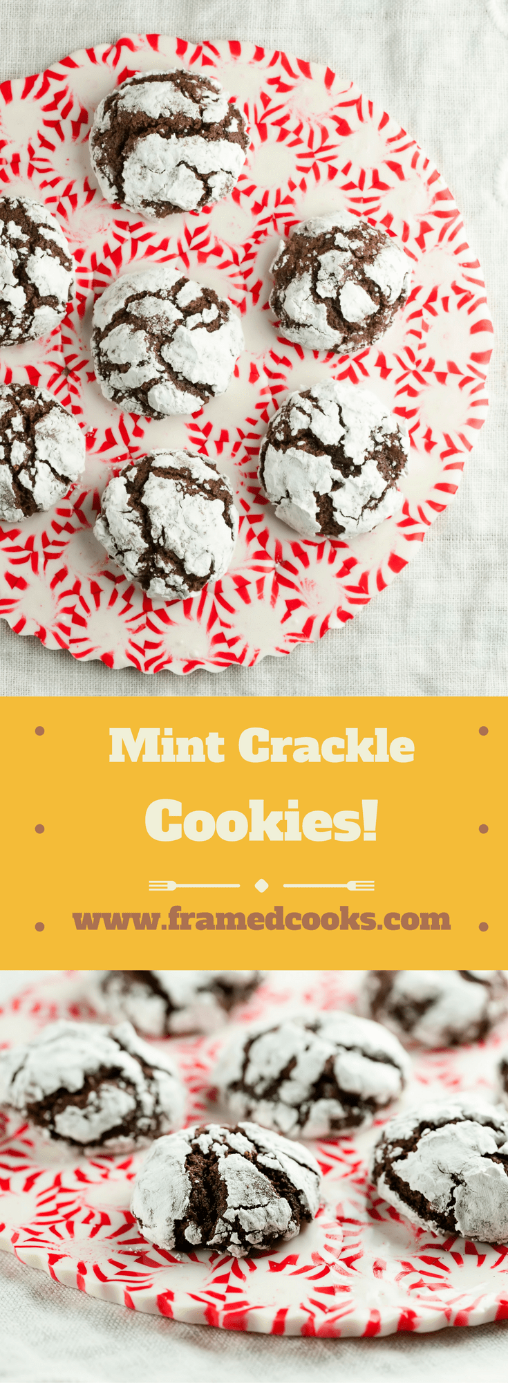 This easy recipe for chocolate mint crackle cookies has all the delicious tastes of the holidays. Powdered sugar sets off the fun crackle design!