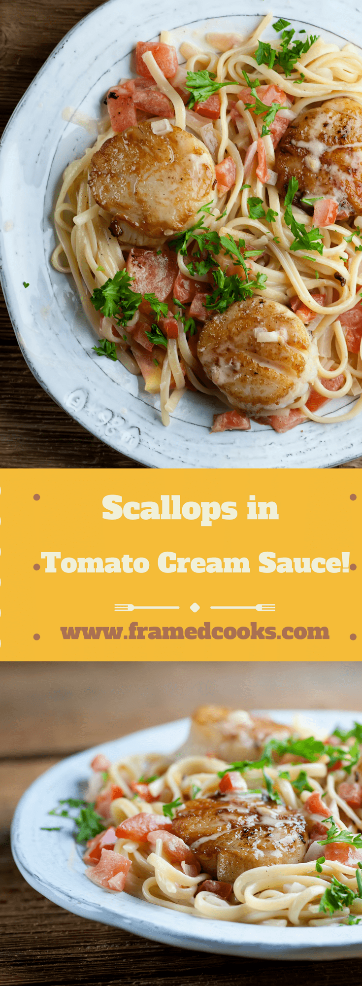 This easy and elegant recipe for seared scallops with tomato cream sauce is fully of the rich flavors of seafood and vegetables, all in a dreamy light sauce.  A perfect company dinner!
