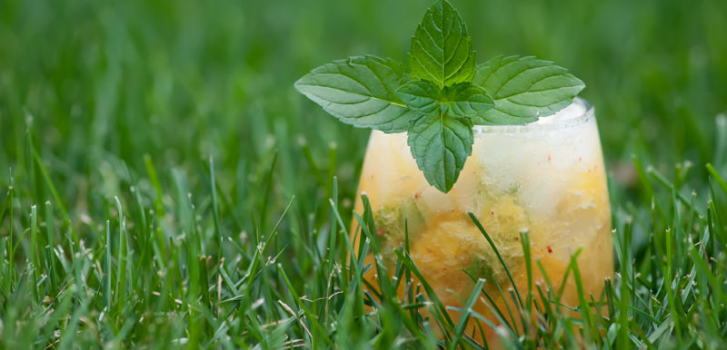Peach Mint Margarita