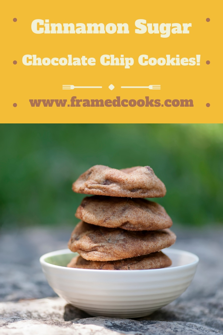 This easy recipe for cinnamon sugar chocolate chip cookies adds some sweet spice to everyone's favorite classic cookie. Perfect for the holidays!