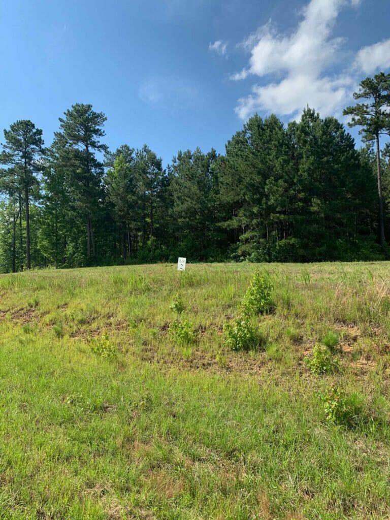 North Carolina meadow