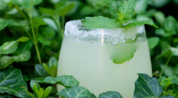 easy iced lemonade cocktail