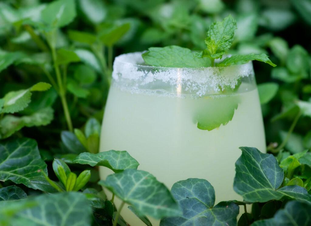 iced lemonade cocktail