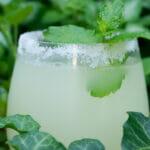 easy iced lemonade cocktail