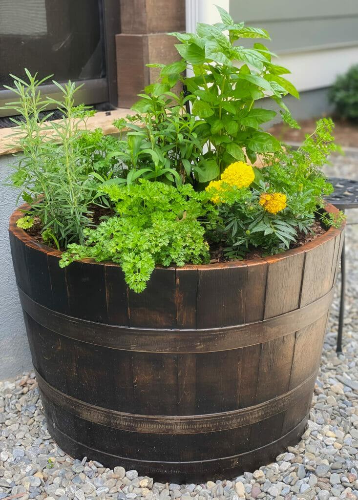 herb barrel