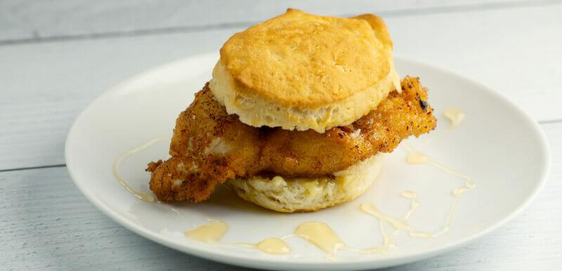 fried chicken honey biscuits